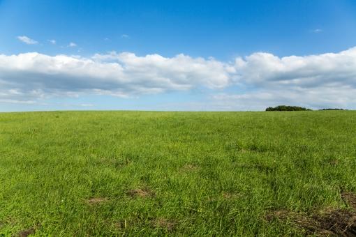 草原・高原3の写真