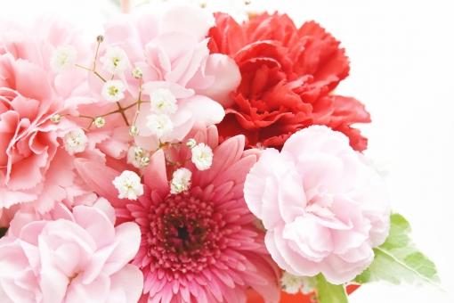 フラワーアレンジメント 花 はな フラワー カーネーション かすみ草 花束 花たば 母の日 誕生日 感謝 プレゼント ガーベラ ピンク ぴんく 赤 レッド 左より 左側 幸せ 幸運 ありがとう 背景 白 ホワイト 背景白 バックグラウンド 素材 イメージ 壁紙 テクスチャ 自然 植物 生け花 リース 明るい 贈る ギフト ブーケ 生花 お祝い メッセージカード メッセージ クリスマス 恒例行事 行事 バレンタイン 贈り物 お返し 結婚 結婚式 ウエディング 春 はる 5月 12月 6月 2月 可愛い かわいい 優しい 愛しい 美しい