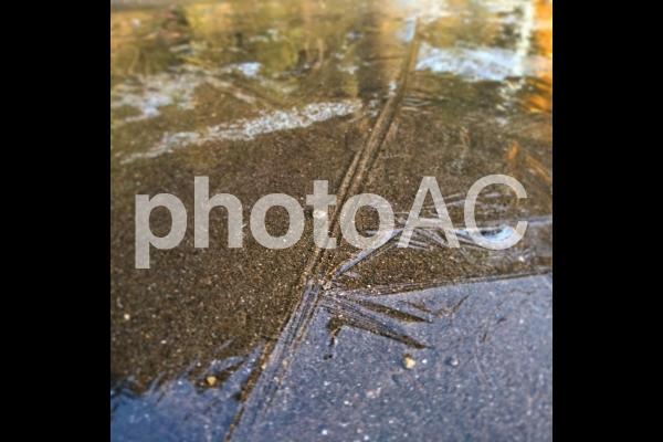 凍る水溜まりの写真