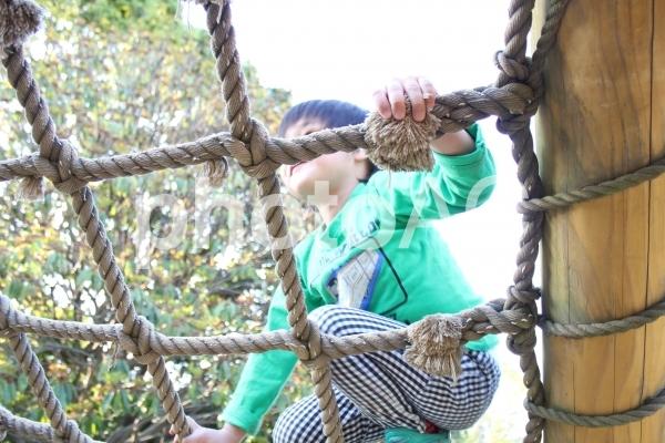 アスレチックで遊ぶ児童の写真