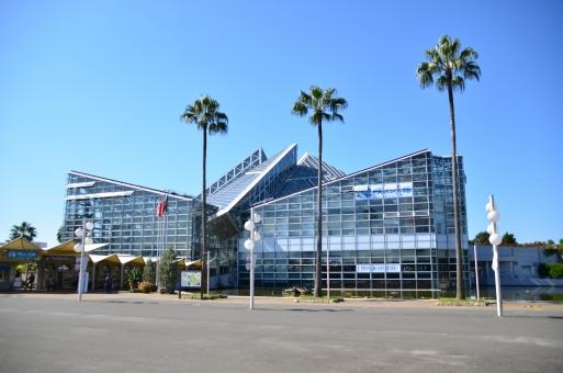 鶴見緑地 花博記念公園 大阪 鶴見区 咲くやこの花館 温室 植物園 パビリオン ガラス張り 施設 ヤシの木 椰子の木 晴れ 青空