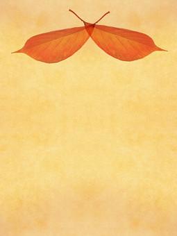 葉 落ち葉 枯れ葉 ドライリーフ 木の葉 素材 葉脈 植物 自然 ベージュ 黄色 オレンジ パターン 暖色 ナチュラル 暖かい 乾燥 空間 テクスチャ 質感 背景 背景素材 バックグラウンド テキストスペース コピースペース  半透明 秋 赤  紅葉 対称 クロス 重なる 透ける 透かし 枠 フレーム