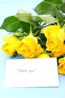 父の日 イベント プレゼント ギフト 行事  花 フラワー 生花 バラ ばら 薔薇 明るい さわやか 爽やか   黄色  6月 六月  贈る カード メッセージカード 花束 thank you THANK YOU 感謝