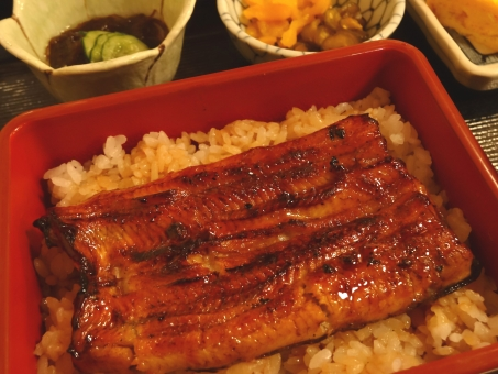 うなぎ 弁当 うなぎ定食 うなぎ弁当 和食 鰻 和定食 蒲焼 うなぎの蒲焼 うな重