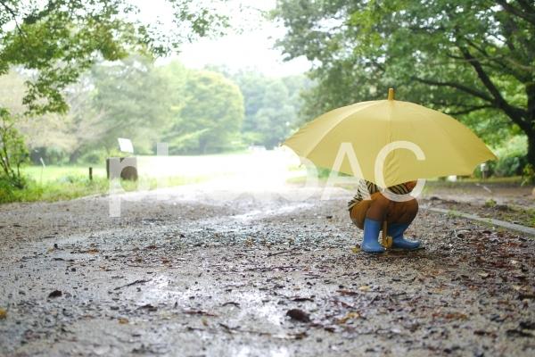 傘をさしてしゃがんでいる男の子の写真