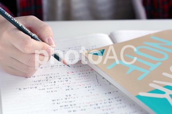 勉強の写真