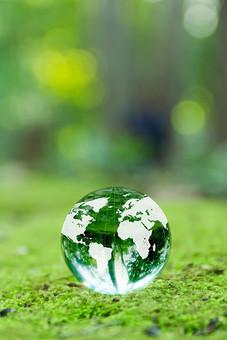 地球 地球儀 エコ エコロジー 環境 自然 環境問題 世界 グローバル ワールド world 社会 社会問題 国際 国際社会 風景 森林 新緑 森 植物 葉 葉っぱ 緑 緑色 光