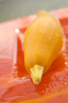 ズッキーニ ウリ科 カボチャ属 黄色 野菜 食料品 食品 食べ物 食べる 健康 フレッシュ 新鮮 自然 ダイエット 食材 農業 収穫 栄養 まるごと 実 ラタトゥイユ 瓜 イタリア料理 フランス料理 皿 プレート