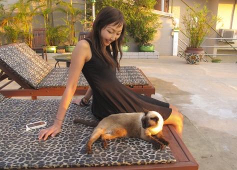 タイのシャム猫と女性の写真
