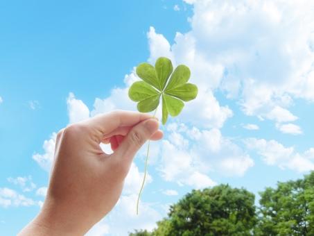空 青空 雲 積乱雲 積雲 白 四葉 四つ葉 クローバー 葉 草 手 森 木 樹木 緑 しろつめくさ シロツメクサ 白詰草 夏 幸せ 幸福 福 ラッキー グリーン 葉っぱ 野原 植物 自然 背景 壁紙 テクスチャー バックグラウンド 素材 さわやか 癒し バック 草原 光 涼しい 公園 みどり 春 花 草花 新緑 初夏 4月 5月 6月 四月 五月 六月 四ツ葉 人物 パーツ 喜び 希望 かわいい 可愛い 環境 エコ eco クリーン