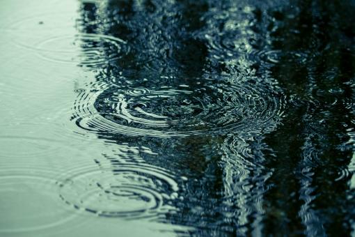雨の記憶の写真