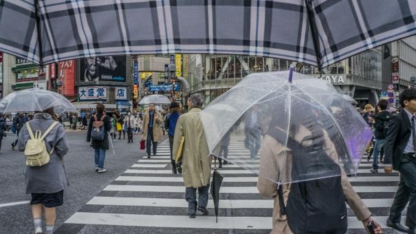 渋谷 スクランブル交差点 都会 雨 傘 ビニール 会社員 社会 女性 男性 サラリーマン おじいさん 曇り チェック 横断歩道 青信号 リュック 天気 冬 初春 秋 暗い 不景気 道路 町並み 街 都会 喧噪 スーツ コート