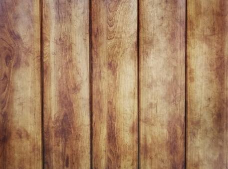 木の背景素材(縦)の写真