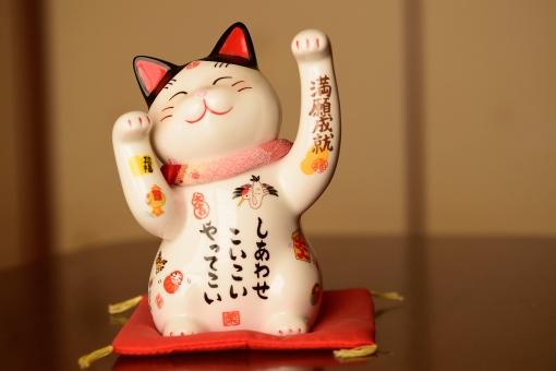 招き猫 まねきねこ 猫 開運 福 招福 笑顔 瀬戸物 貯金箱 幸せ しあわせ 手招き 赤 座布団 和