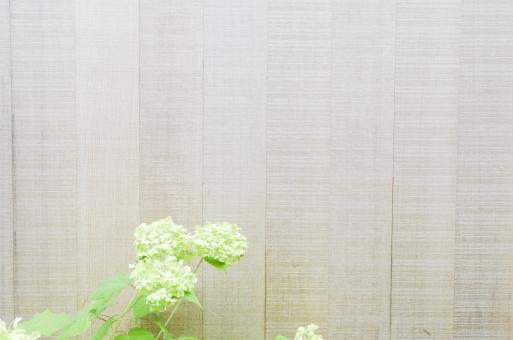 板壁 木製 壁 かべ カベ 植物 花 素材 ウッド 木 葉 葉っぱ 緑 グリーン テキストスペース 文字スペース 背景 背景素材 コピースペース diy カフェ レストラン ショップ バック バックグラウンド テクスチャ