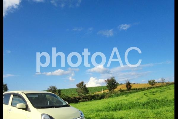 ドライブ日和の写真