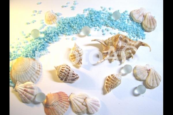 海のイメージ4の写真