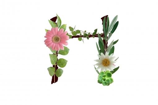 アルファベット ローマ字 英文字 文字 植物 花 グリーン 多肉 ガーベラ オリーブ テクスチャ 素材