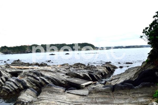 三浦半島 横須賀市荒崎公園 ソレイユの丘方面海の写真