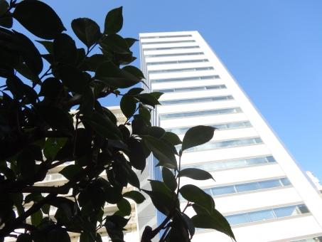 ビル 高層ビル オフィス 探偵 潜む 影 陰 物陰 隠れる うかがう 伺う 様子をうかがう 様子を伺う 離れる 双眼鏡 調査 興信所 浮気 疑惑 疑い 疑う パワハラ サラリーマン 出勤 出張 高層 見上げる 建築物 技術 工事