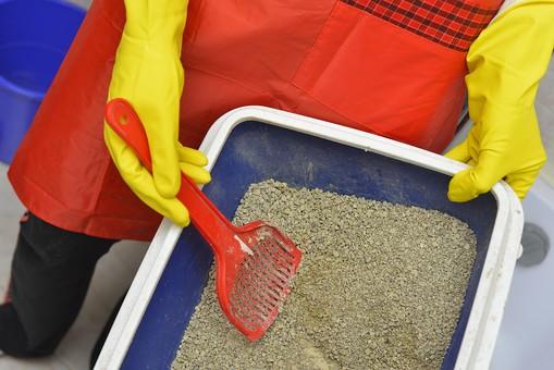 人 人物 手 手袋 てぶくろ 黄色 ゴム手袋 エプロン 装着 オレンジ色 スウェット ジャージ 衣服 衣類 掃除 清掃 猫砂 砂 砂利 トイレ スコップ バケツ トレイ ペット 動物