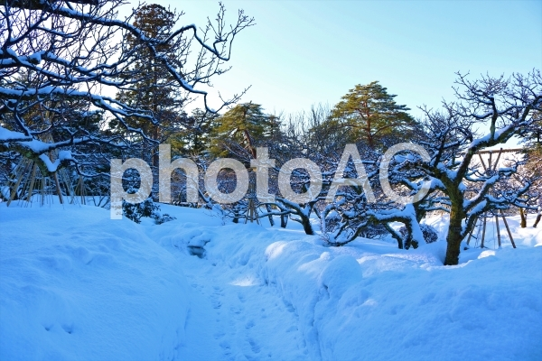 雪だらけの写真