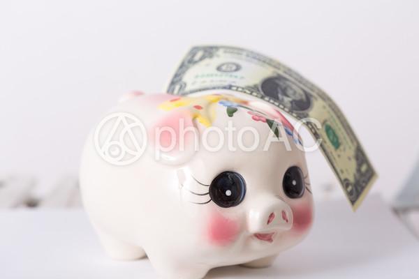 貯金箱と外国の紙幣5の写真