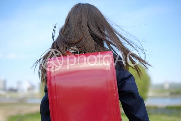 小学生の女の子54の写真