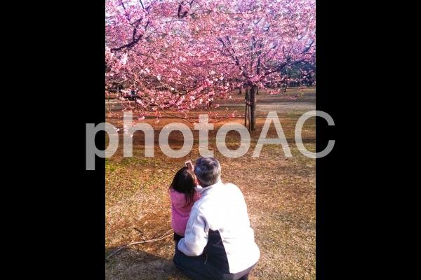 孫と一緒の春の写真