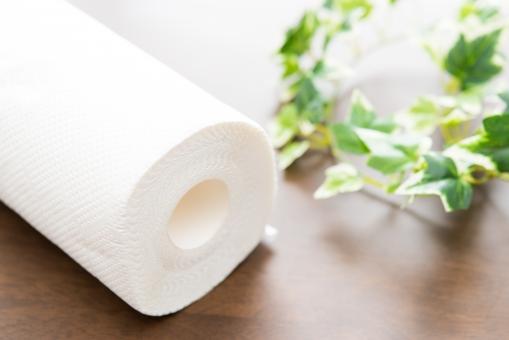 キッチンペーパー キッチン 台所 清潔 シダ 緑 クリーン 拭く 家事 ロール 紙 かみ 白 テーブル 主婦 料理 厚手 木目 机