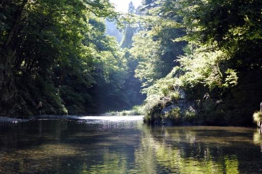 自然 大自然 山 森 川 アウトドア キャンプ 水 せせらぎ 夏 初夏 6月 7月 8月 背景 風景 水遊び 夏休み イベント 行事 行楽 リラックス 森林浴 緑 植物 癒し ヒーリング 涼しげ 涼しい キラキラ 空気 透明 透明感 環境 エコ