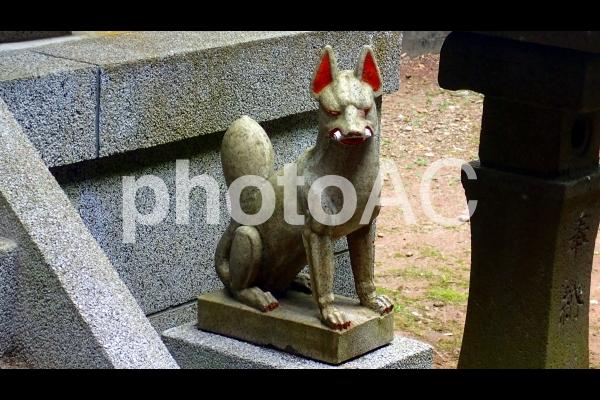狛狐(巻物)の写真
