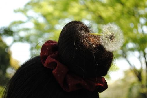 お団子 ヘアー 頭 お団子頭 髪型 シュシュ 髪飾り たんぽぽ 花 植物 飾り 自然 緑