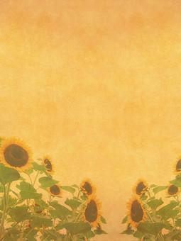 ひまわり ヒマワリ 向日葵 夏 花 植物 自然 草花 素材 空間 ナチュラル テクスチャ 質感 背景 背景素材 バックグラウンド テキストスペース コピースペース ベージュ 枠 フレーム 半透明 透ける 透かし 花びら 飾り枠 加工 写真加工