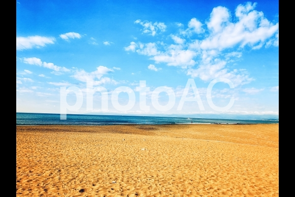 真夏の海辺の写真