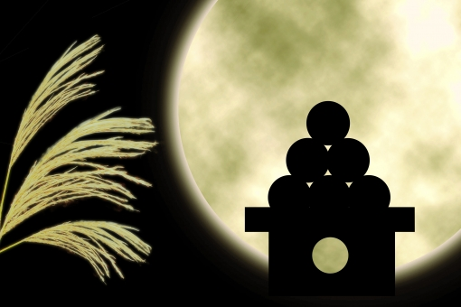 満月とお月見団子1の写真