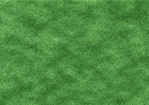 地面 大地 芝生 天然芝 人工芝 芝 緑 背景 テクスチャ テクスチャー 背景素材 素材 広場 グラウンド フィールド ゴロゴロ グリーン ピッチ 球場 スタジアム 庭