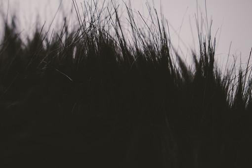 毛皮 けがわ ファー  レザー ファッション 服 コート 動物 人工 ふわふわ 温かい あたたかい 保温 ほおん 布 ぬの 生地 きじ 材料 ざいりょう 原料 げんりょう クラフト くらふと おしゃれ オシャレ 冬 ふゆ フェイク  襟 えり パーカー ぱーかー 毛足 けあし  黒 くろ 暗い 色 長い 毛先