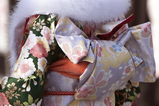 振袖 着物 和服 帯 晴れ着 正月 初詣 和風 新春 女性 成人式 綺麗 晴れやか 若い女性 お参り 参拝 待ち受け画面 ポストカード コピースペース 背景 自然・風景 和柄 お年始 華やいだ 季節感 冬 日本の伝統 日本イメージ 日本の美