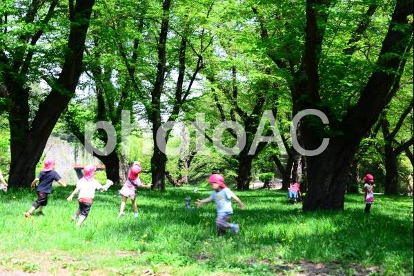元気な子供たち 新緑 エコイメ-ジの写真
