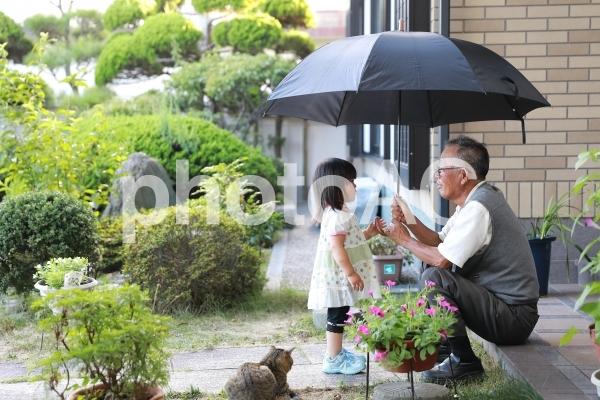 お爺ちゃんと孫と猫4の写真