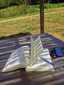 日陰 勉強 学習 涼 問題集 携帯電話 ペン 木 机 テーブル 緑 自然 野外 田舎 風景 景色