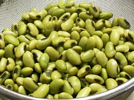 青大豆 ひたし豆 おつまみ 塩豆 しお豆 おかず 煮豆 夏の味覚 総菜 そうざい ゆでた豆 ゆで豆