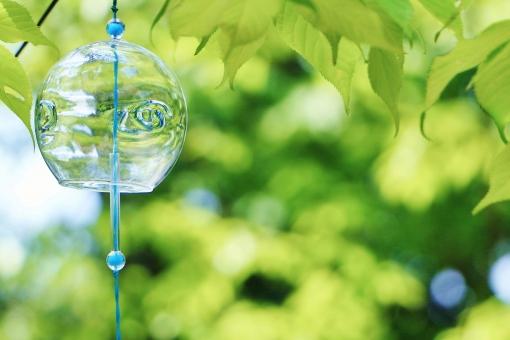 風鈴とグリーンの写真