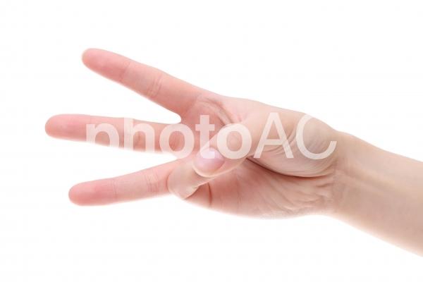 若い女性の手 三本の写真