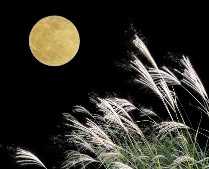 満月とすすき(ラメ加工有)Full Moon & Susukiの写真