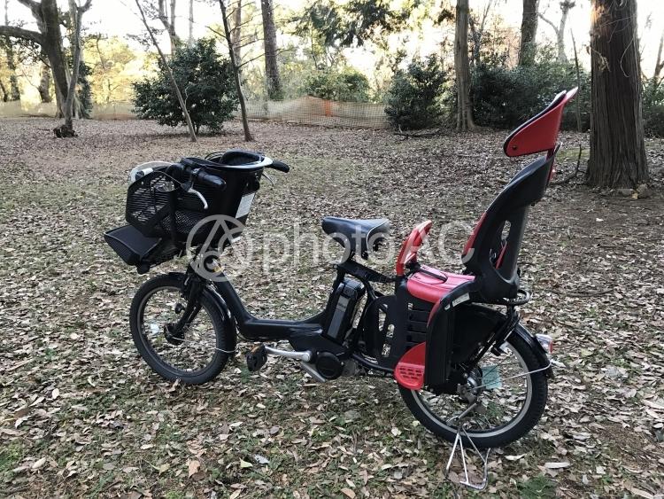 森の中の電動アシスト付き自転車の写真