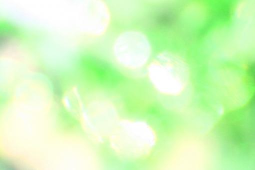黄緑 グリーン グラデーション 輝き キラキラ きらきら 木漏れ日 希望 夢 喜び 背景 壁紙 テクスチャ