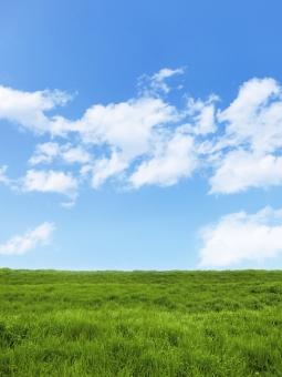 自然 植物 風 そよ風 空気 草 空 青空 雲 積雲 青 水色 草原 縦 たて タテ 白 土手 芝 芝生 丘 シンプル 広大 さわやか 爽やか 爽快 鮮やか すがすがしい 気持ちいい 気持ち良い 晴れ 快晴 天気 ナチュラル 潤い うるおう うるおい グリーン 黄緑 新緑 明るい 葉っぱ はっぱ 風景 エコ エコロジー 環境 eco eco いやし リラックス リラクゼーション やすらぎ 安らぎ マイナスイオン 健康 美容 背景 背景素材 テクスチャ テクスチャー バックグラウンド 3月 4月 5月 6月