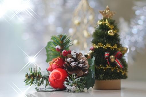 クリスマスの写真